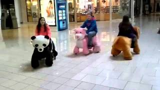 ride animals in the mall