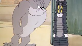 Том и Джерри - Телохранитель (Серия 15)