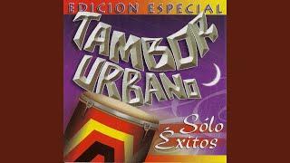 Canto de Pilon / Carmela