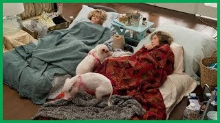 Grace and Frankie season 5 cast: Who is in the cast of Grace and Frankie? | BS NEWS