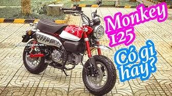 Honda Monkey 125 mới 2018 Đánh giá xe đầu tiên Việt Nam