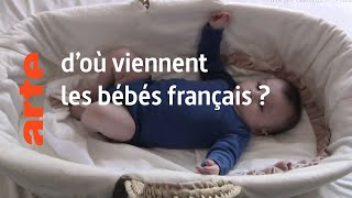 la tradition : d'où viennent les bébés français ? - Karambolage - ARTE
