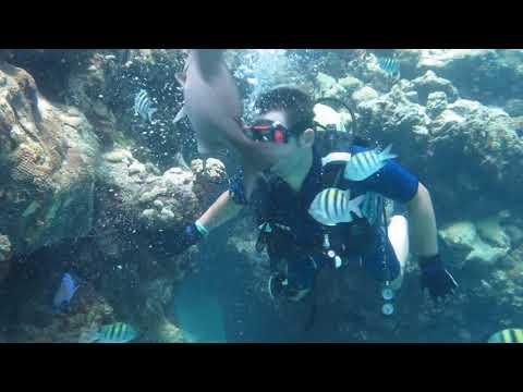Athens dive adventure