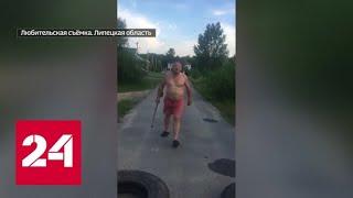 Буйный амбал с лопатой напал на девочку и разбил машину - Россия 24