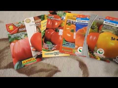 СОРТА ТОМАТОВ 2020 Купила еще немного помидор
