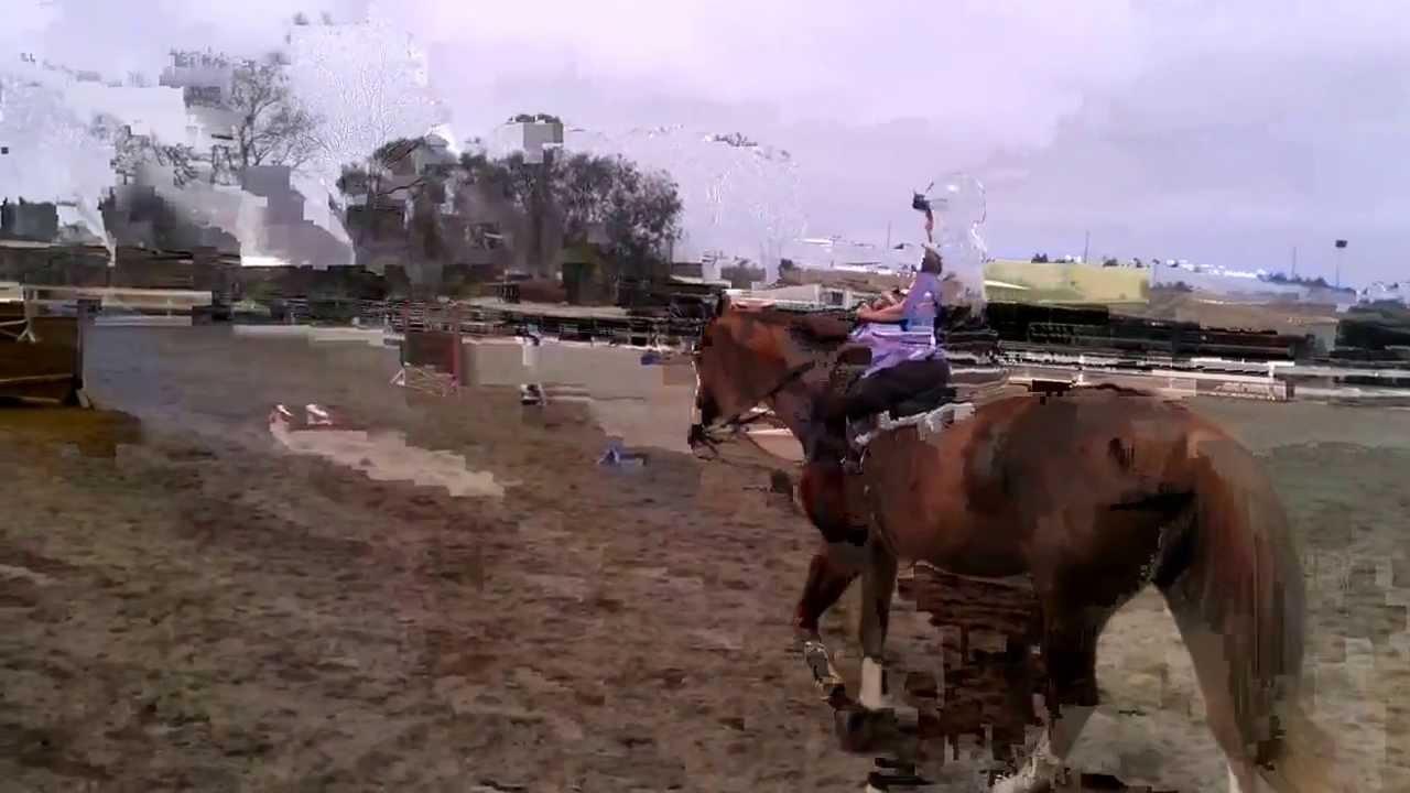 Horseback Riding At Central Park Equestrian Center In Huntington Beach Ca