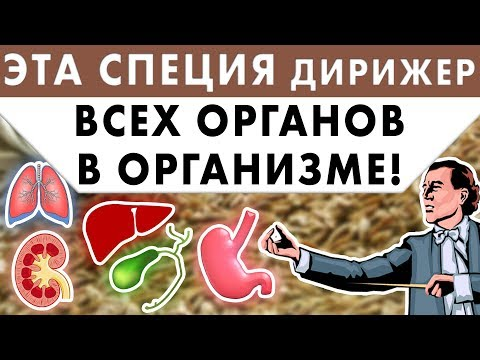 ЭТА СПЕЦИЯ ДИРИЖЕР ВСЕХ ОРГАНОВ В ОРГАНИЗМЕ! Лишний вес, худоба, стресс, зоб, зира Исламбекова.