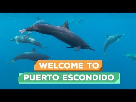 Welcome To PUERTO ESCONDIDO MEXICO -  Vlog 187