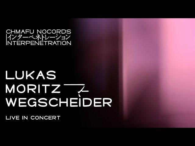 Lukas Moritz Wegscheider @ Interpenetration 1.9.1