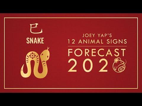 2020 Animal Signs Forecast: SNAKE [Joey Yap]