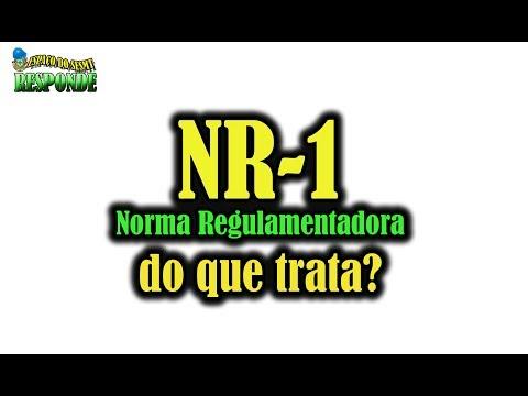 NR 1 - DO QUE TRATA?