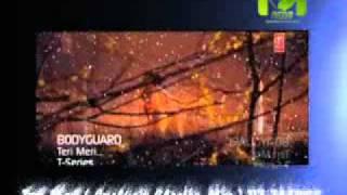Teri Meri  Exclusiv Electro Mix