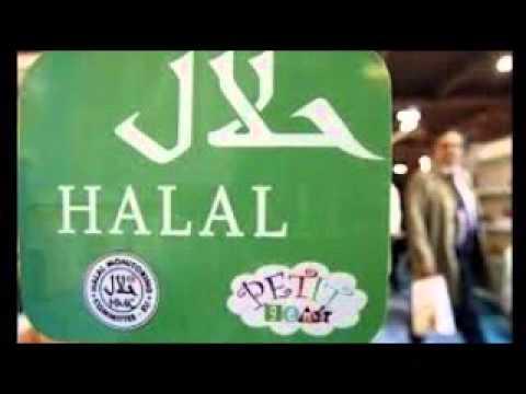 Biro Perjalanan Haji Plus dan Umroh Cheria Tour Travel Di Jakarta Selatan