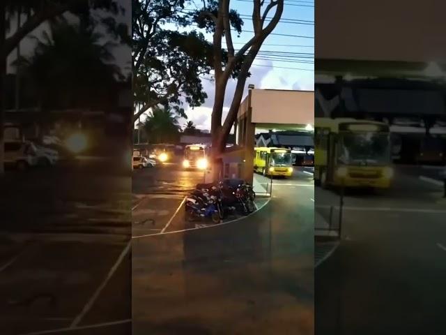 Frota de ônibus está em total operação, mas é preciso descentralizar horários de pico