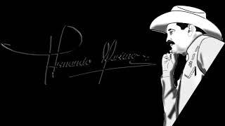 Armando Martinez en Vivo Volumen 1 YouTube Videos