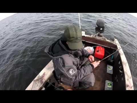 Прогноз клева рыбы Рыбхоз прогноз