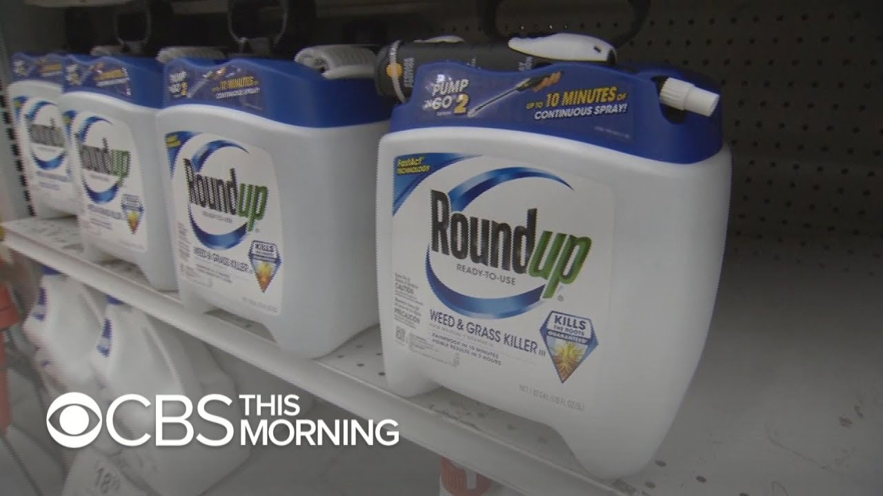 Jury finds Monsanto's Roundup weed killer contributed to man's cancer