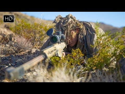 U S  Marines With RSTAC Participated in a Sniper field Training Exercise