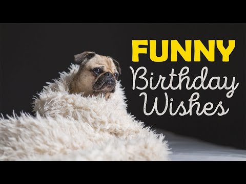 Funny Birthday Wishes Free ECards Greeting