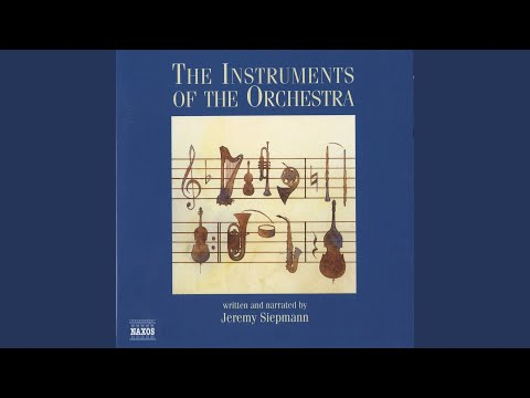 Instruments of the Orchestra: The puffa-puffa image of the bassoon