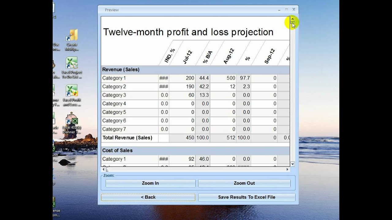 excel profit and loss report