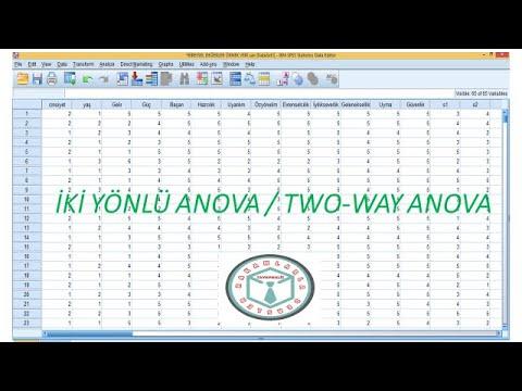SPSS ile Tekrarlayan Ölçümlerde ANOVA (iki yönlü)