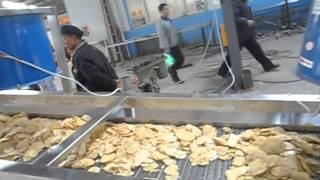Automatic French Fries and  French Fry Chips Production Line Thumbnail