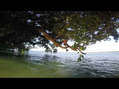 Namdrik Atoll Coconut Diaries 10 Island Flooding