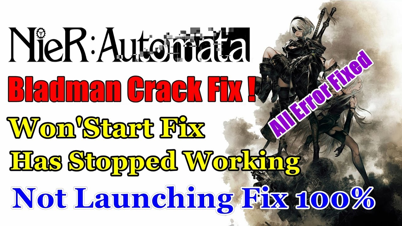 nier automata crack only