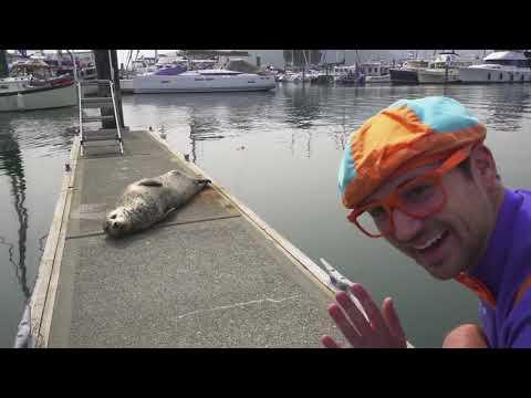 Blippi Toys! Boats For Children With Blippi Educational Videos For Toddlers