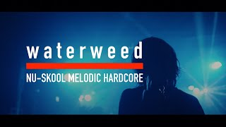 waterweed - Counterfeit (Diffuse Tour 2019 - Music Video)