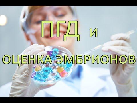 ПГД и оценка эмбрионов