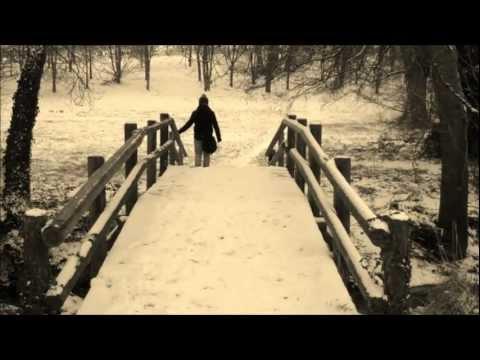 Un singe en hiver Indochine - clip amateur