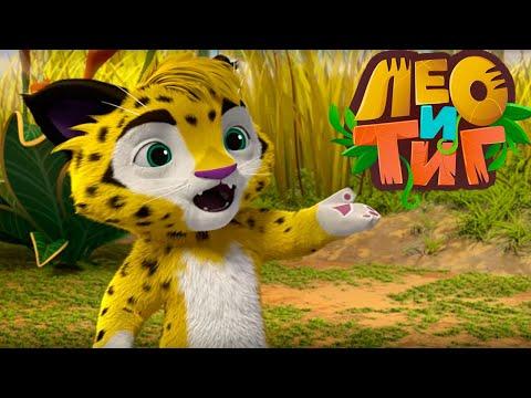 Лео и Тиг — Игра для носорога — Серия 40