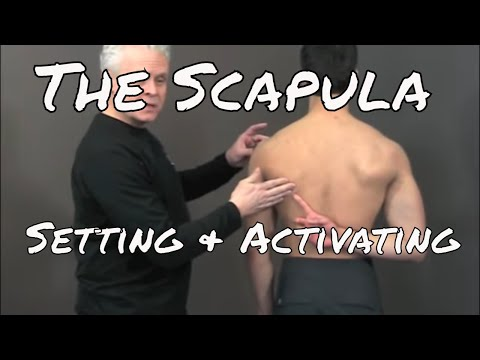 Shoulder Exercise - Setting and Activating the Scapula