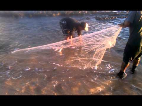 Throw net lanai