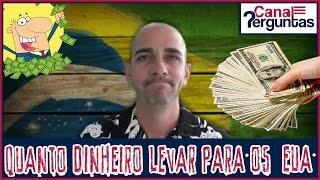 Quanto dinheiro levar para começar a vida do zero nos Estados Unidos sendo solteiro? ✔