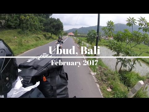 Our Last Week in Bali   Ubud   February 2017