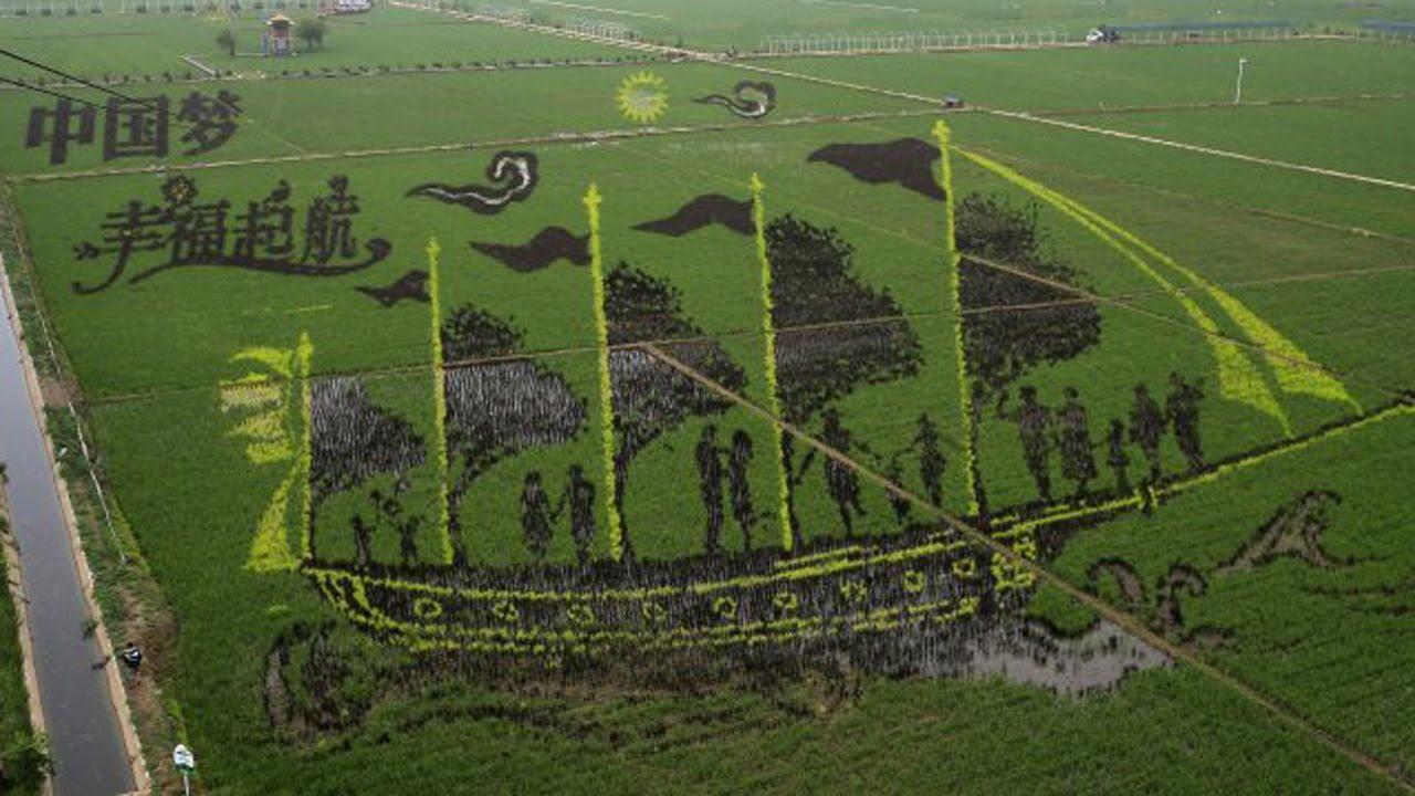 China Impresionantes Figuras En 3d En Campos De Cultivo