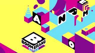 Boomerang - 2014/2015 bumpers