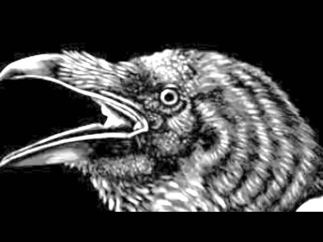 El Cuervo, de Edgar Allan Poe.