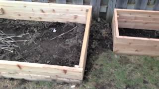 Making Raised Garden Boxes From Cedar In A Small Backyard