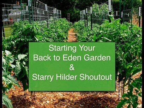 Starting Your Back To Eden Garden & Starry Hilder Shoutout~