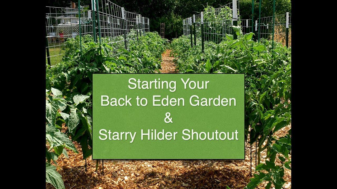 Elegant Starting A Garden From Scratch