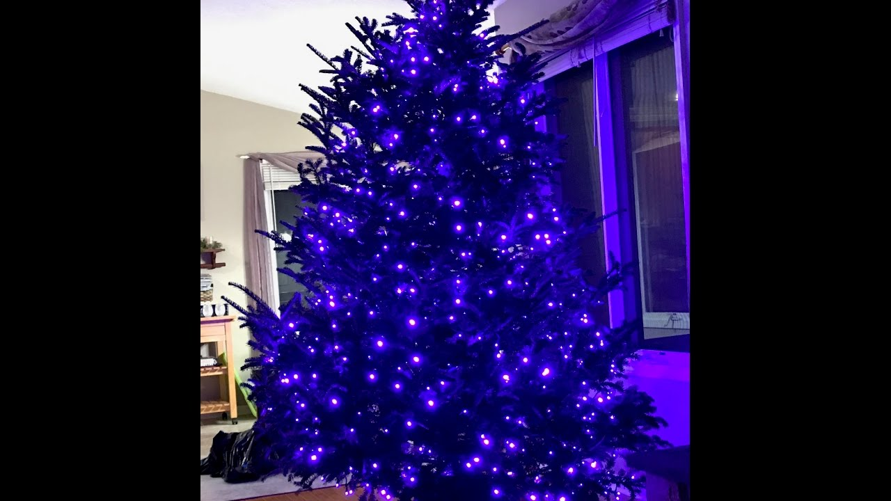 Purple Christmas Tree.How To Install Christmas Tree Lights Purple 5mm