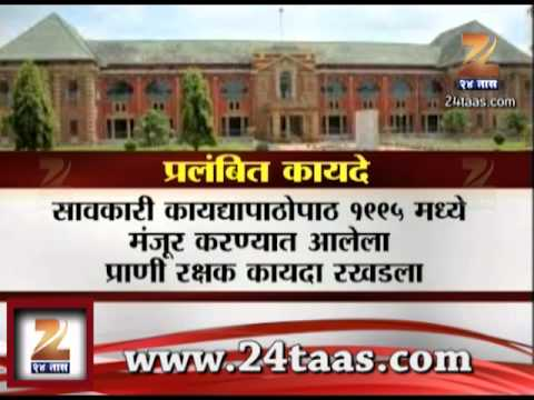Zee24Taas : Nagpur 9 Law In Pipeline To Be Approved