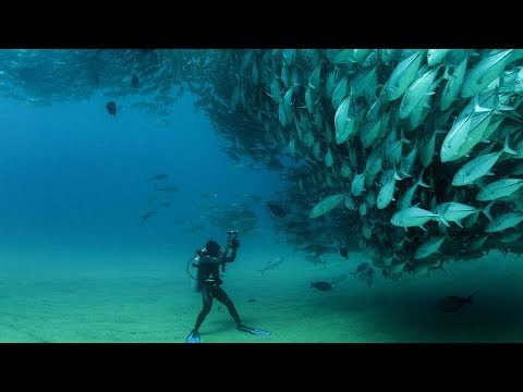 Best Diving Sites in Egypt, Red Sea, Indian Ocean. GoPro 4 Scuba Diving, Underwater