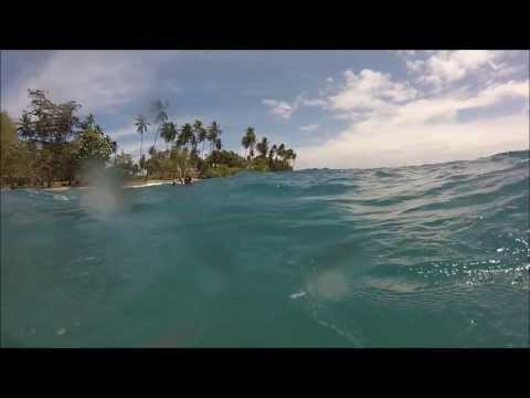 Diving in the Solomon Islands - Western Province and Guadalcanal