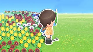 I Tried To Turn My Entire Island Into Flowers in Animal Crossing New Horizons