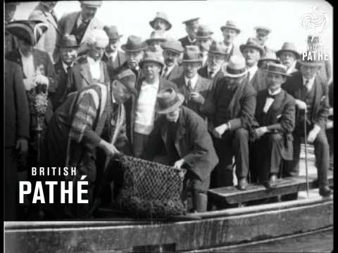 Colchester Oyster Catch Aka The First Catch Of The Season (1922)